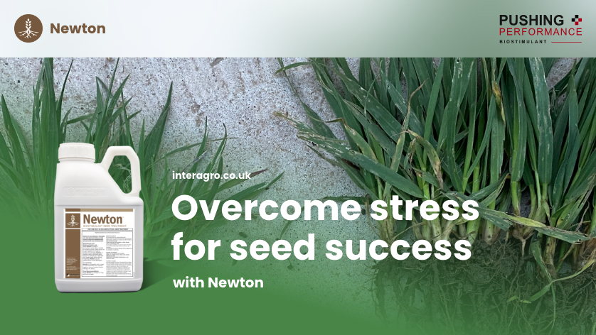 Protect seed health before drilling