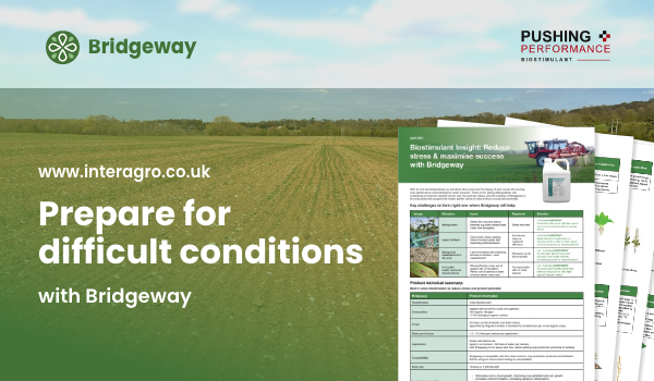 Prepare for difficult conditions with Bridgeway