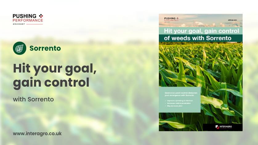 Overcome weed control obstacles to optimise maize potential