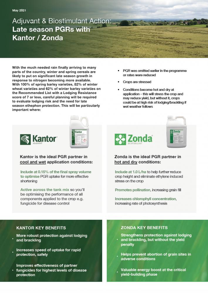 Prepare for late season PGRs with Kantor/Zonda